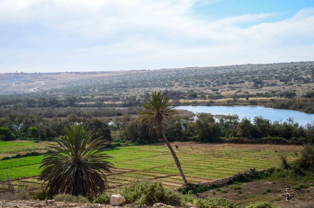 Der Nationalpark Massa in Agadir in Marokko Landausflug Mein Schiff 4